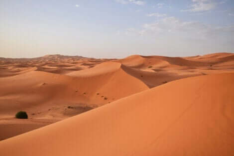 Sandbakker i ørken