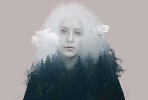 Apori illustreres af kvindes omrids med skov som krop