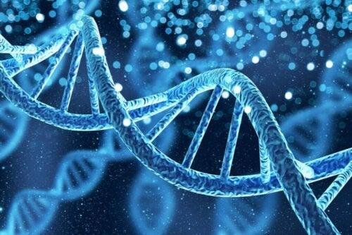 Illustration af DNA