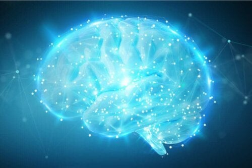 En hjerne lyser op