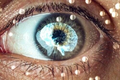 Ganzfeld-effekten: Et fascinerende blik ind i din hjerne