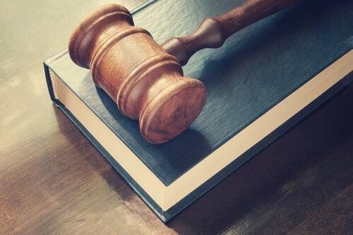 Ungdomskriminalitet og retssystemet: Hvordan fungerer det?